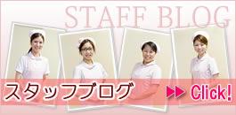 京極歯科スタッフブログ
