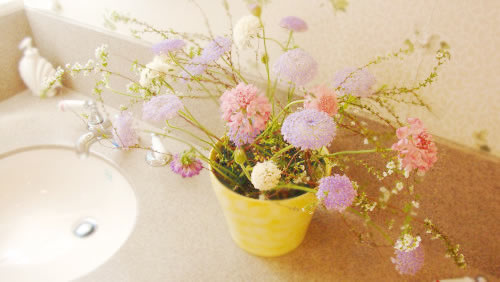 季節のお花が飾られていることも・・・。